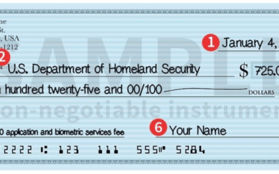 How Do I Pay Filing Fees to Immigration?